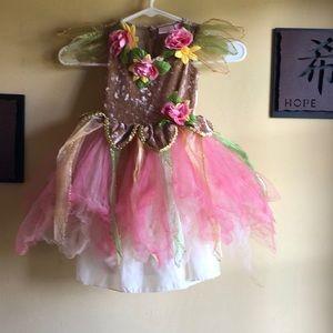 Fairy Dust Fairy Costume